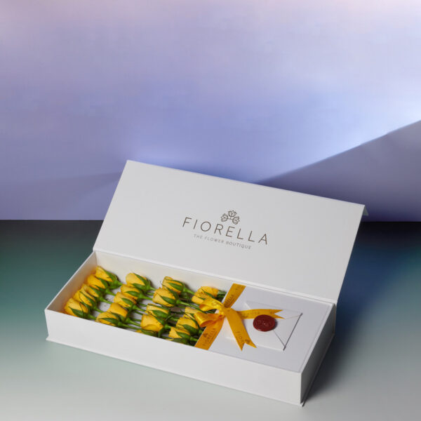 Flap Box 2200